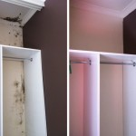Before and after cupboard-mould-removal